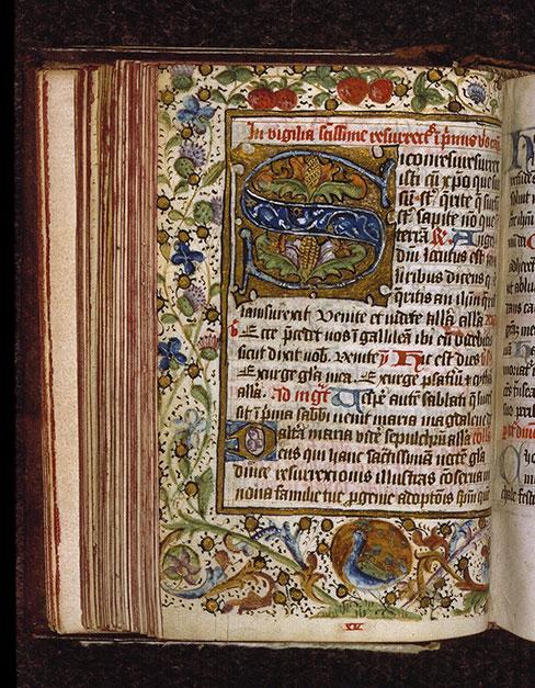 Diurnal cistercien - Paon faisant la roue_0