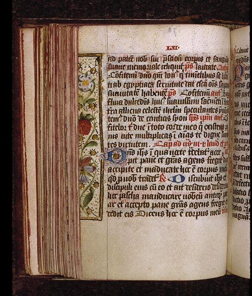 Diurnal cistercien - Fraise et fleurs_0