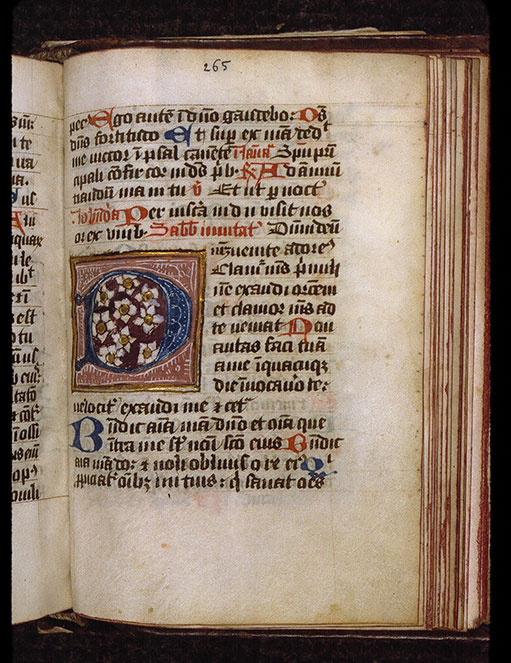Diurnal cistercien - Initiale ornée_0