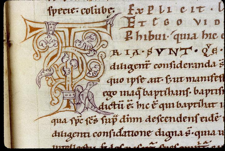Comment. in Evangelium Johannis - Oiseau_0