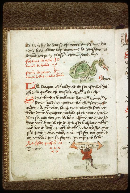 Introduction à l'astrologie - Constellation : le Dragon_0