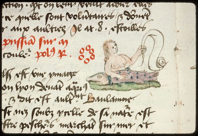 Introduction à l'astrologie - Constellation : la Baleine_0
