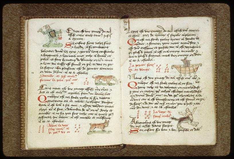 Introduction à l'astrologie - Constellation : le Grand Chien_0