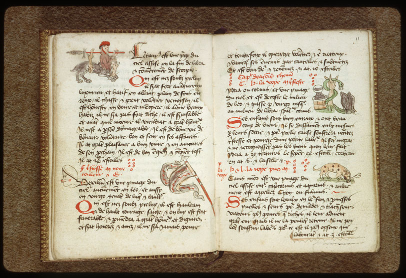 Introduction à l'astrologie - Constellation : les Voiles_0