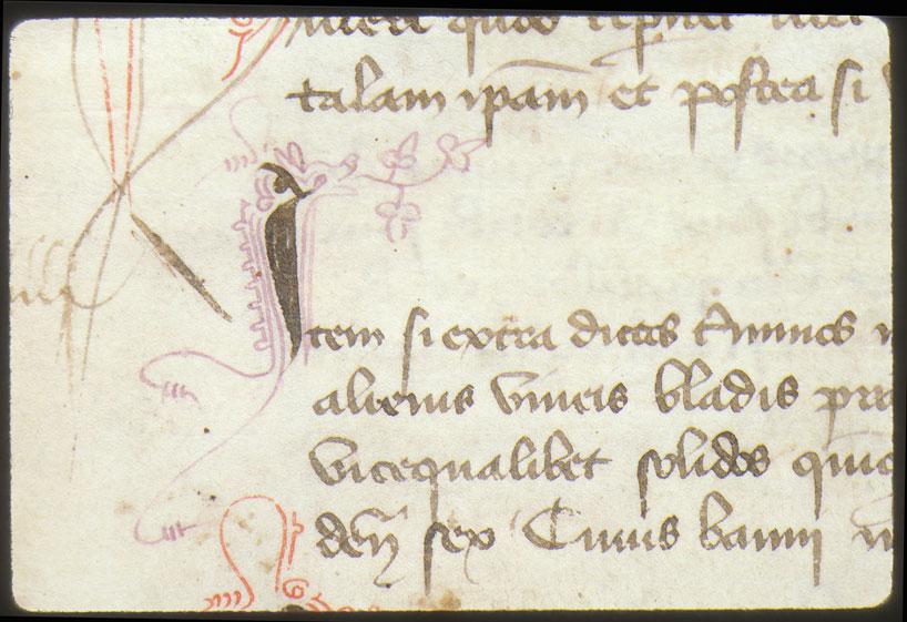 Cartulaire municipal d'Aix-en-Provence, Livre rouge (1) - Hybride zoomorphe crachant des végétaux_0