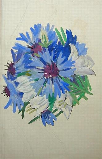 Bouquet de bleuets [titre attribué]_0