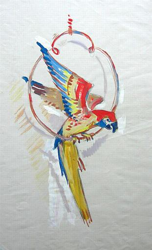 Le perroquet [titre attribué]_0