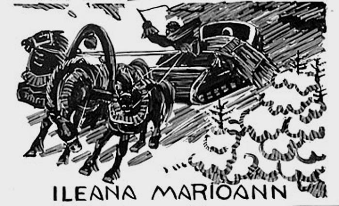 Ileana Marioann : fuite au milieu des sapins [titre attribué]_0