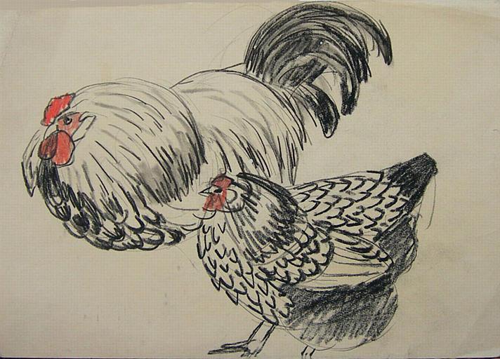 Couple gallinacé en noir et blanc (étude) [titre attribué]_0