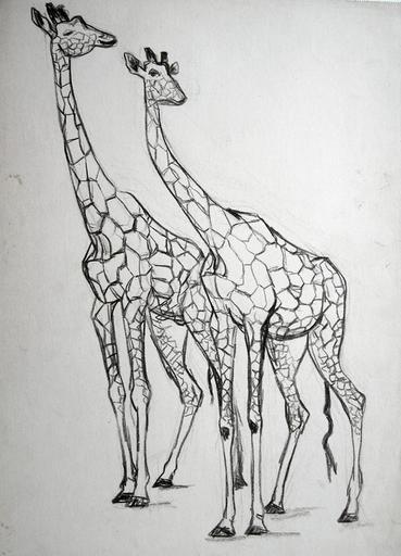 Deux girafes (étude) [titre attribué]_0