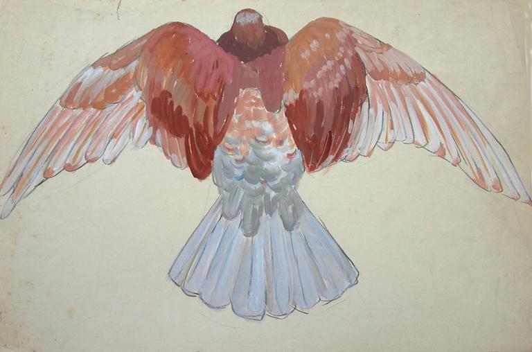 Pigeon brun, ailes déployées (étude) [titre attribué]_0