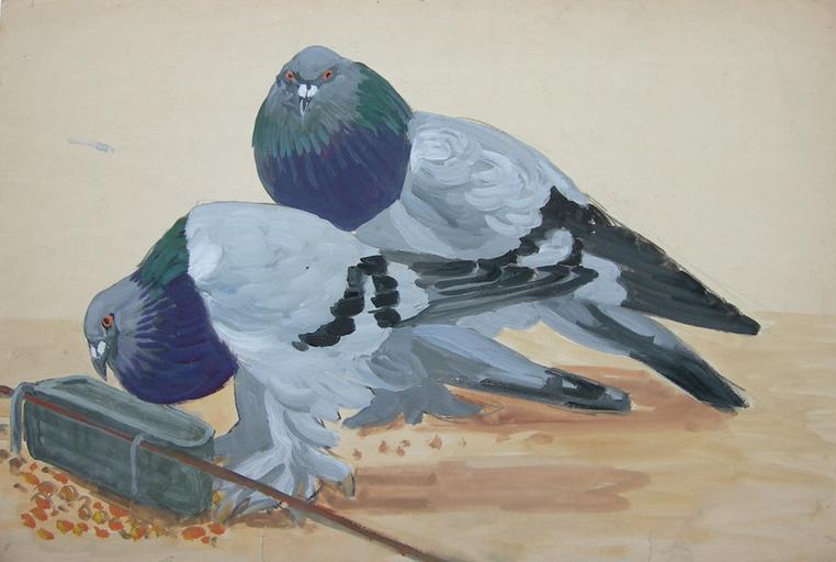 Deux pigeons à la mangeoire [titre attribué]_0