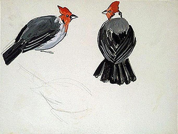 Deux oiseaux à tête rouge (étude) [titre attribué]_0