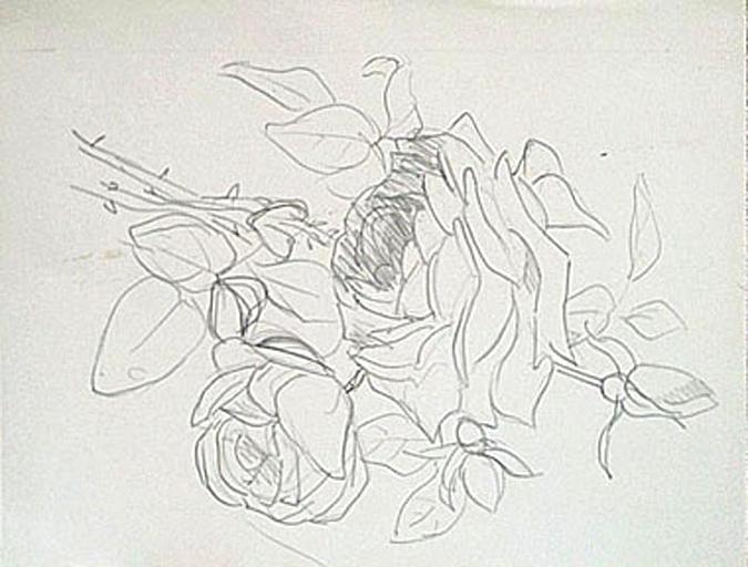 Etude de roses [titre attribué]_0