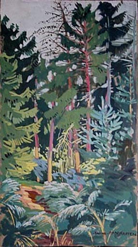 Les sapins de la forêt de Fontainebleau [titre attribué]_0