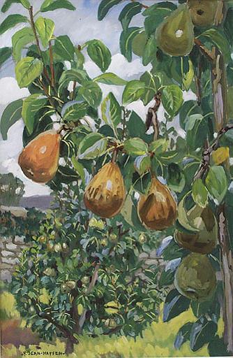 Les poires de la Grande Vigne [titre attribué]_0