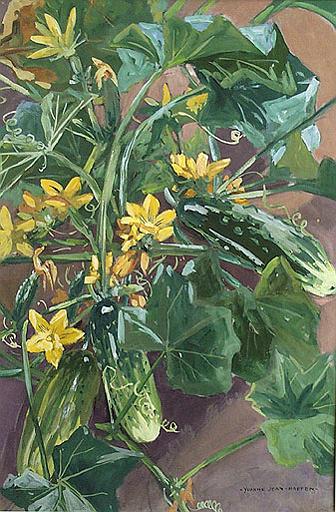 Plants de cornichons fleuris (étude) [titre attribué]_0