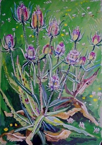 Fleurs de chardon (étude) REPR : représentation végétale (chardon, herbe, fleur, jardin, Dinan) [titre attribué]_0