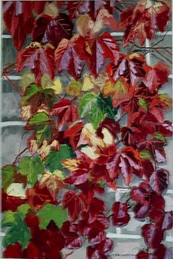 Vigne vierge en automne (étude) [titre attribué]_0
