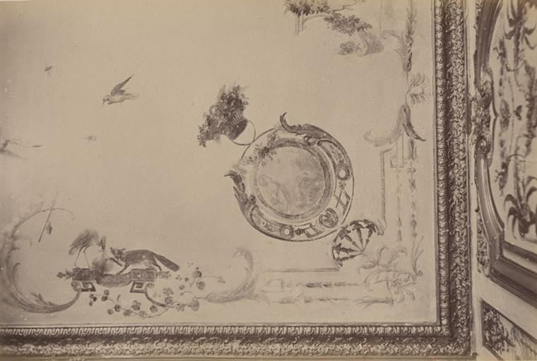 Fragments du cabinet des Singes. Plafond_0