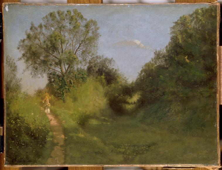Sentier au bord d'un vallon ombreux_0