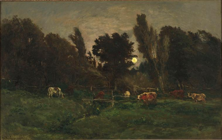 Le pré des Graves, à Villerville_0