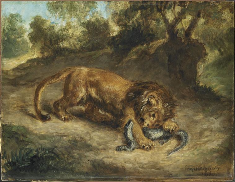 LION ET CAIMAN_0