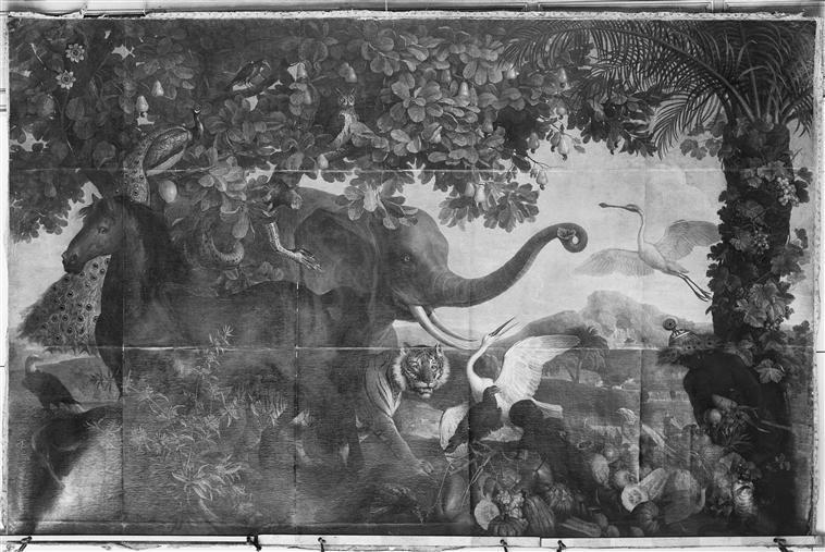 L'ELEPHANT OU LE CHEVAL ISABELLE_0