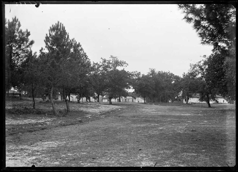 ARNAUDIN Félix : Quartier - Bourricos (Pontenx) (Titre attribué)
