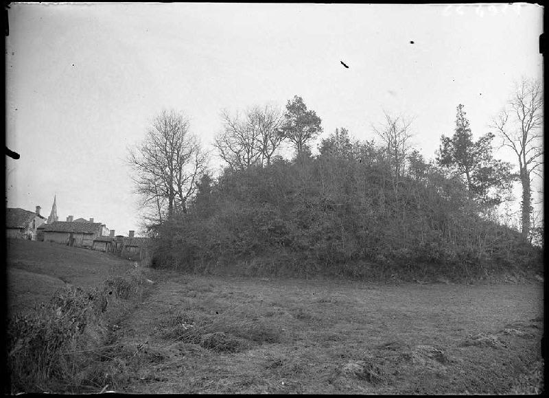 Motte du château - Belin-Beliet (Gironde) (Titre attribué)_0