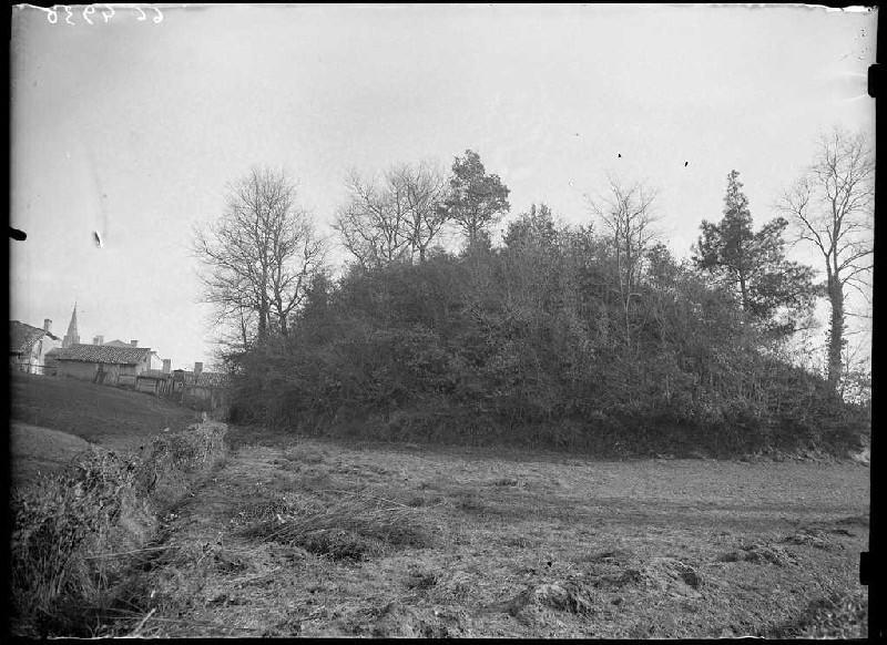 Motte du château - Belin-Beliet (Gironde) (Titre attribué)