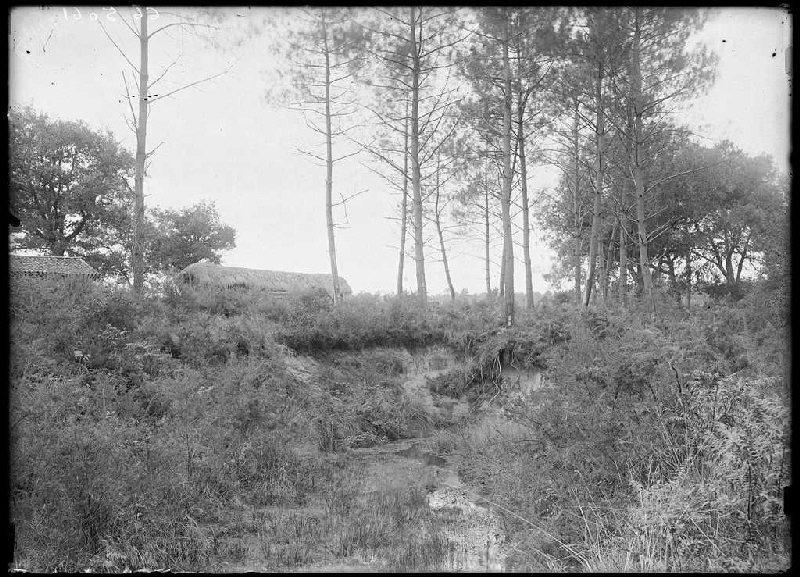 Ruisseau près de la maison Dourthe - Le Mariné (Lüe) (Titre attribué)_0