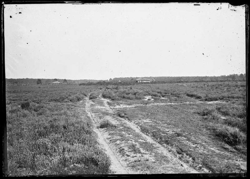 Chemin dans la lande - Sanglourous (Commensacq ?) (Titre attribué)_0