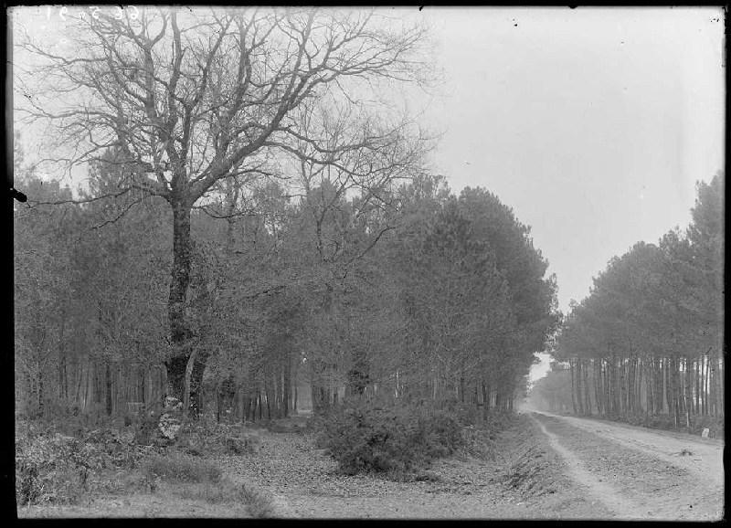 ARNAUDIN Félix : Ancienne route et route pavée - Bouhet (Commensacq) (Titre attribué)