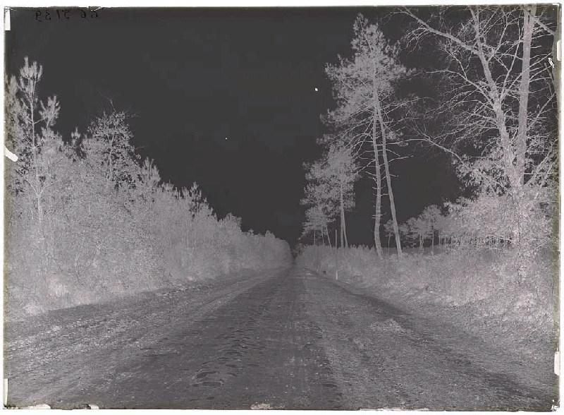 route, vieux pavés - Sabres (Landes) (Titre attribué)