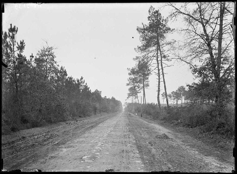 Route, vieux pavés - Sabres (Landes) (Titre attribué)_0