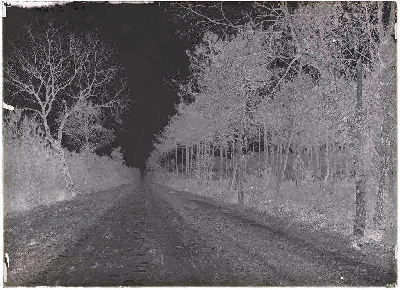 ARNAUDIN Félix : route, vieux pavés - Sabres (Landes) (Titre attribué)