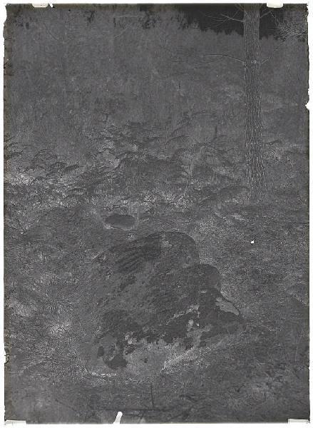 La Pierre du Diable - Montespiou (Lugos) (Titre attribué)_0