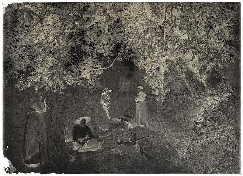 ARNAUDIN Félix (photographe) : Sarcleuses - Grué ( Lüe) (Titre attribué)