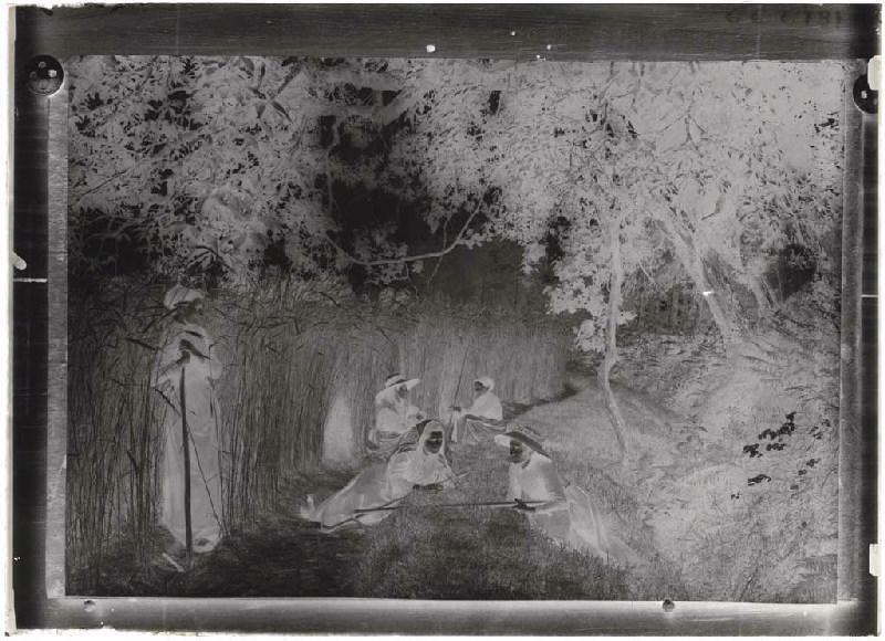 ARNAUDIN Félix (photographe) : Reproduction d'un cliché des sarcleuses de Grué (Titre attribué)