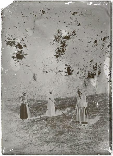Faneuses (Babé, Catine et Marie) - Le Monge (Labouheyre) (Titre attribué)_0