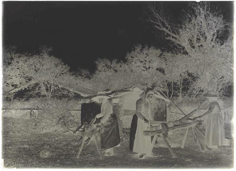 ARNAUDIN Félix (photographe) : Bargayres, scène de teillage - Lapoussade (Commensacq) (Titre attribué)