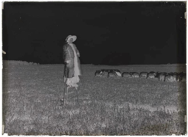 ARNAUDIN Félix (photographe) : Bergère échassière - Piaulet (Sabres)