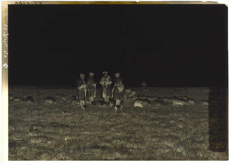 ARNAUDIN Félix (photographe) : Bergers échassiers
