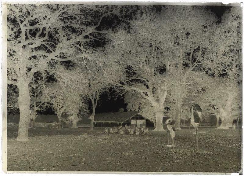 ARNAUDIN Félix (photographe) : Femme et berger échassier