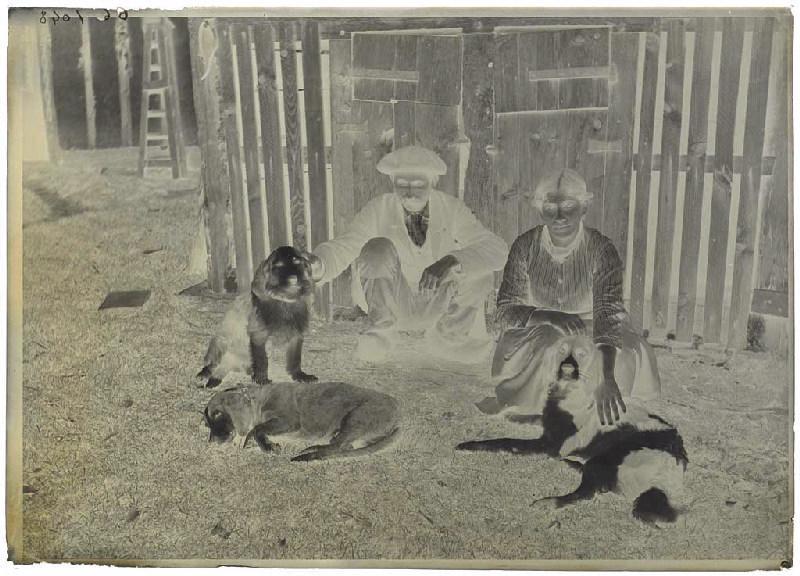 Marie Darlanne, un homme et trois chiens_0