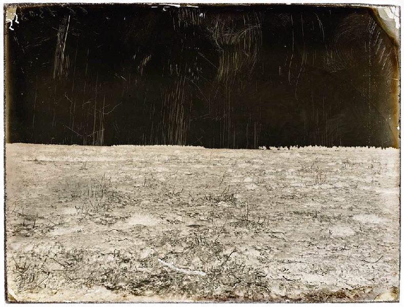 ARNAUDIN Félix (photographe) : Parc de Gilet