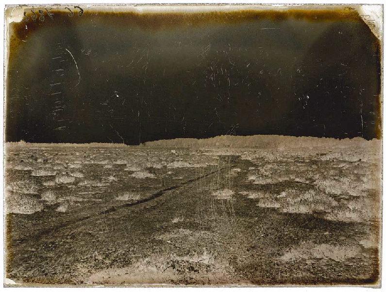 ARNAUDIN Félix (photographe) : Chemin Vert (Voir cliché n° 66.27.2968)