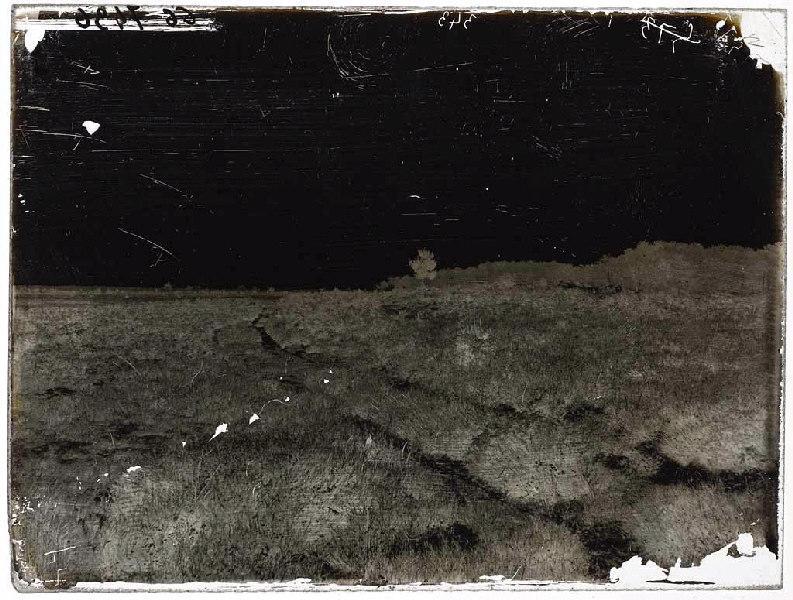 Chemin dans la lande_0