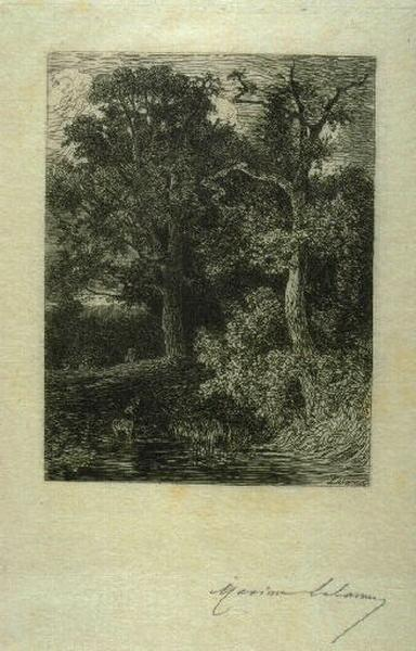 En forêt, crépuscule_0